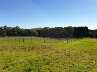 89-123 Hartley Road Tamborine Mountain QLD 4272 - Image 3