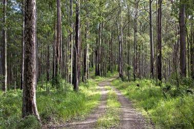 Gorton Forest Estate Mill Creek Road Stroud NSW 2425 - Image 1