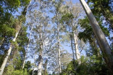 Gorton Forest Estate Mill Creek Road Stroud NSW 2425 - Image 2