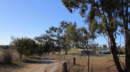 606 Peabody Road Molong NSW 2866 - Image 1