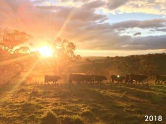 Boree, Oxley Highway Walcha NSW 2354 - Image 1