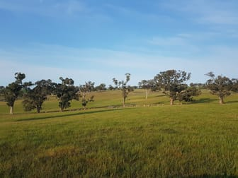 Uplands, Memagong Lane Young NSW 2594 - Image 1
