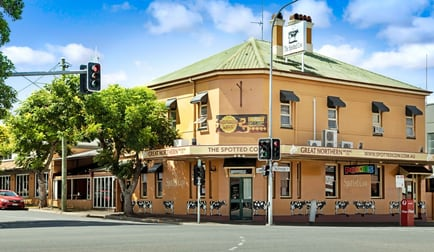 THE SPOTTED COW/296 Ruthven Street Toowoomba City QLD 4350 - Image 1