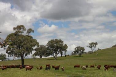 For Sale: Avondale Dunedoo NSW 2844 - Image 1