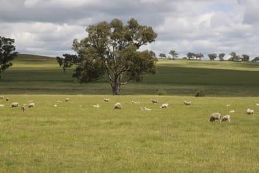 For Sale: Avondale Dunedoo NSW 2844 - Image 3