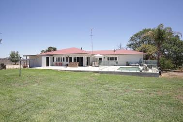 100 Years of Award Winning Yields Inverell NSW 2360 - Image 2