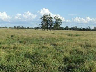 Lot 24 & 25 Texas Yelarbon Road Glenarbon QLD 4385 - Image 1