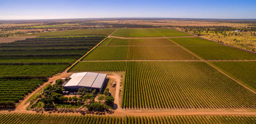 Cordoma Farms Gregory Highway Emerald VIC 3782 - Image 1