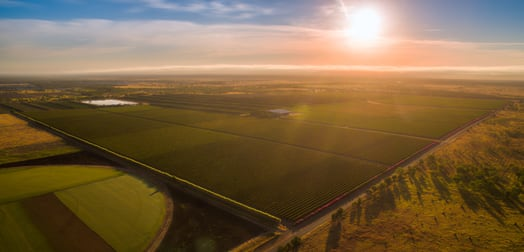 Cordoma Farms Gregory Highway Emerald VIC 3782 - Image 3