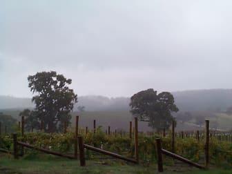 Domain Day Vineyard Lot 349 Springton Road Williamstown SA 5351 - Image 2