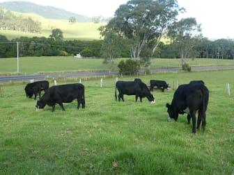 Kundibakh NSW 2429 - Image 2