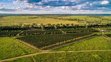 """""""Gayndah Orchard Aggregation"""" 15851 Burnett Highway Gayndah QLD 4625 - Image 1"""