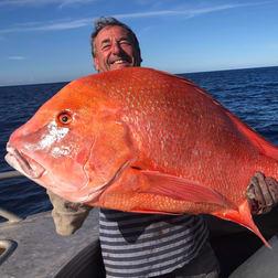 Rainbow Beach QLD 4581 - Image 2