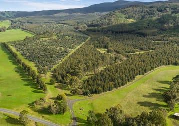 910 King Parrot Creek Road Strath Creek VIC 3658 - Image 1