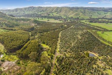 910 King Parrot Creek Road Strath Creek VIC 3658 - Image 3