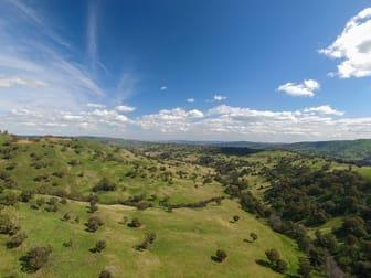 1479 Coolah Creek Road Coolah NSW 2843 - Image 3