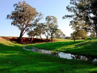 2242 Nangar Road Canowindra NSW 2804 - Image 3