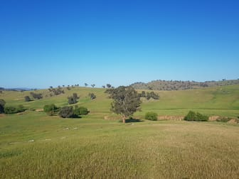 58 Fairfield Road Wagga Wagga NSW 2650 - Image 3