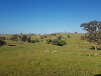 58 Fairfield Road Wagga Wagga NSW 2650 - Image 1