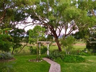 8428 Mitchell Highway Wellington NSW 2820 - Image 2