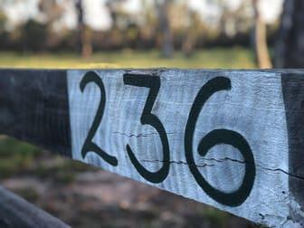 236 Maude Hill Road Deepwater QLD 4674 - Image 2