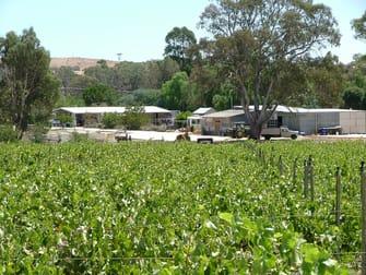 2444 Horvat Estate Winery Landsborough VIC 3384 - Image 2