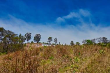 602 Bakers Creek Rd Bakers Creek NSW 2359 - Image 3