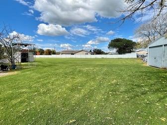 56 Rowan Ave Uralla NSW 2358 - Image 3