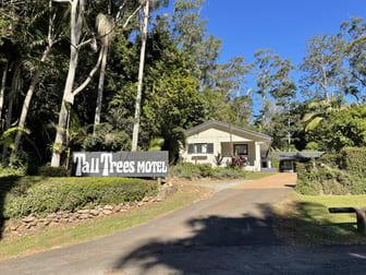 9 Eagle Heights Road Tamborine Mountain QLD 4272 - Image 1
