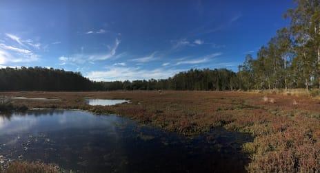 242 Big Island Wallis Lake NSW 2428 - Image 2