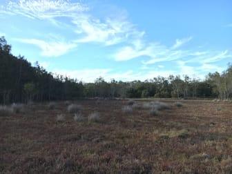 242 Big Island Wallis Lake NSW 2428 - Image 3