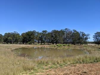 1683 Beebo Seventeen Mile Road Beebo QLD 4385 - Image 3