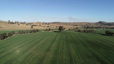Wagga Wagga NSW 2650 - Image 3