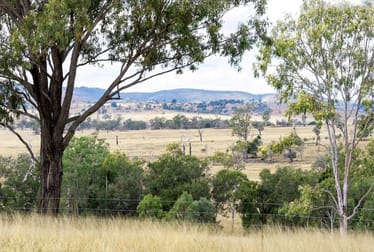 Gayndah Cattle Country/232 Pile Gully Road Pile Gully QLD 4625 - Image 1