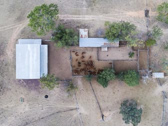 Gayndah Cattle Country/232 Pile Gully Road Pile Gully QLD 4625 - Image 2