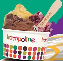 Trampoline Gelato Burwood franchise for sale - Image 3