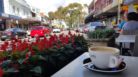 1 & 3/105 - 109 Longueville Road Lane Cove NSW 2066 - Image 3