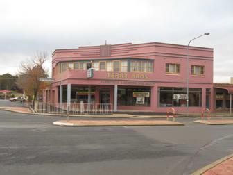 248 Boorowa Street Young NSW 2594 - Image 1