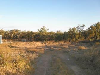 19 Bush Crescent Rockhampton City QLD 4700 - Image 3