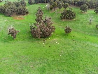 Lot 8474 Da Ronchs Road North Greenbushes WA 6254 - Image 3
