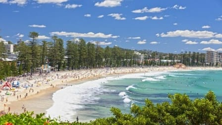 Professional Services  business for sale in Manly - Image 1