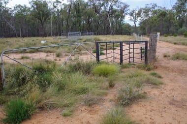 709 Tuppiari Road Narrabri NSW 2390 - Image 1