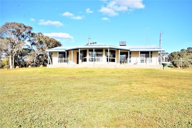 251 Rhodes Road Young NSW 2594 - Image 3