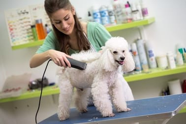 Animal Related  business for sale in Padstow - Image 2