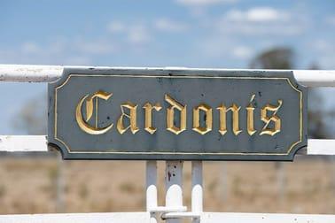 929 CARDONIS PILLIGA ROAD Wee Waa NSW 2388 - Image 2