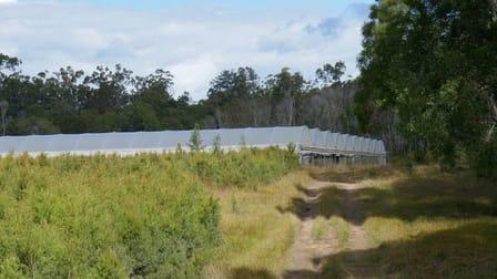 2670 Bungawalbin Whiporie Road Gibberagee NSW 2469 - Image 2