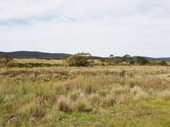 4687 Cooma Rd Braidwood NSW 2622 - Image 3