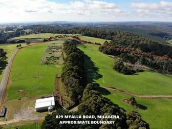 829 Myalla Road Milabena TAS 7325 - Image 2