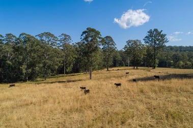 Beechwood NSW 2446 - Image 3