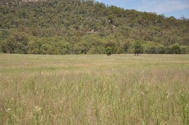 Lot 7 Ferndale Road Yarrawa NSW 2328 - Image 3